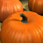 PUMPKIN PATCH: A PERFECTLY DELICIOUS PEDICURE
