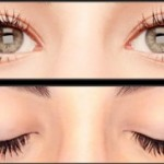 LASHDIP LOVE – The Ultimate Lash Enhancement Experience