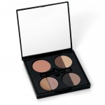 LEEZA GIBBONS PRESENTS SHEER COVER FACE PALETTE