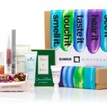 BEAUTY BOX FEVER: WHICH SUBSCRIPTION SUITS YOU BEST?