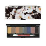 PRETTY EYE SHADOW PALETTE CASE BUT IS THE EYE SHADOW JUST AS PRETTY?